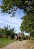 езда воскресенье Стоковые Фото