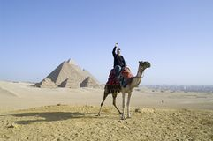 езда Египета верблюда Стоковая Фотография