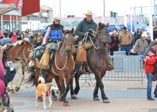 езда лошади Стоковые Изображения