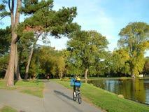 езда парка Стоковое фото RF