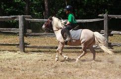 Езда пониа Стоковые Фото
