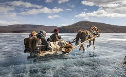 Езда розвальней на замороженном озере Khovsgol Nuur стоковое фото rf