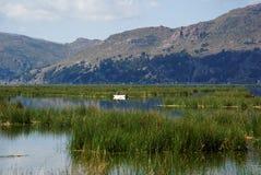 Езда шлюпки озера Titicaca стоковые изображения