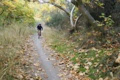 езда mt bike вскользь Стоковая Фотография