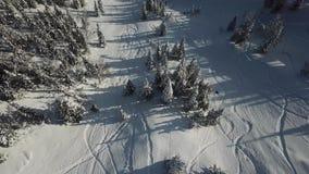 Езда snowboarder трутня вида с воздуха freerider в снеге порошка видеоматериал