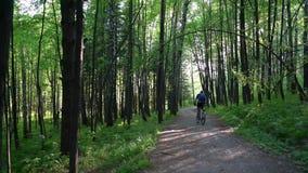Езды велосипедиста вдоль леса
