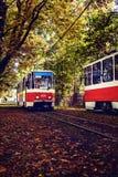 Езды трамвая через переулок осени Стоковые Фото