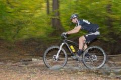 Езды Mountainbiker через поток леса Стоковые Изображения