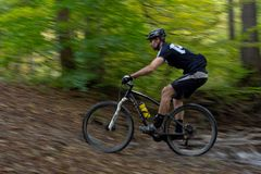 Езды Mountainbiker через поток леса Стоковое Фото