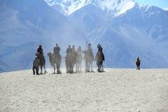 Езда верблюда в Nubravally Стоковые Фото