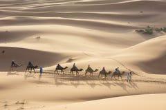 Езда верблюда на Марокко Стоковые Изображения