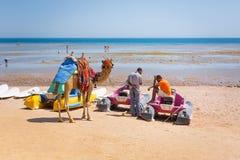Езда верблюда человека предлагая на пляже Hurghada Стоковые Изображения RF