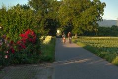 Езда велосипеда вдоль дороги фермы Стоковая Фотография