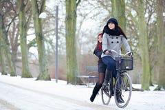 Езда велосипеда в парке зимы Стоковое Фото