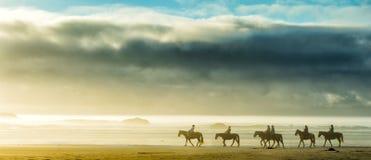 Езда захода солнца на пляже Стоковые Фотографии RF