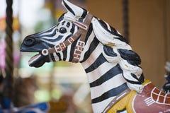 Езда зебры стоковое фото rf