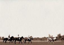 Езда лошади группа в составе всадники Стоковое Фото