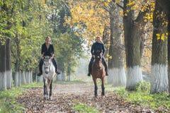 Езда лошади Стоковое фото RF