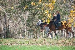 Езда лошади Стоковая Фотография
