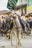 Езда лошади montubio в Salitre, эквадоре Стоковое фото RF