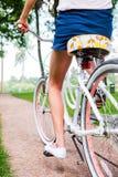 Езда парка Стоковая Фотография RF