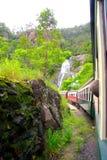 Езда поезда к Kuranda Австралии стоковые фотографии rf