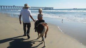 Езда пони на пляже Стоковые Фотографии RF