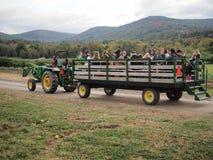 Езда сена стоковые фото