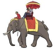 Езда слона Стоковые Изображения
