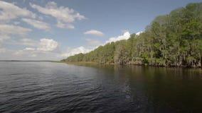 Езда шлюпки в озерах Флориды видеоматериал