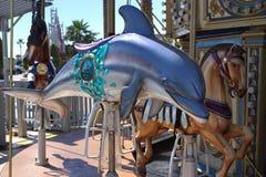 Езда carousel дельфина Стоковые Фото