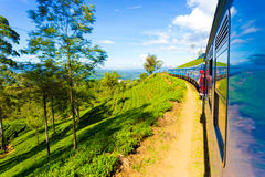 Езда h поезда страны холма плантации чая Шри-Ланки стоковые фотографии rf