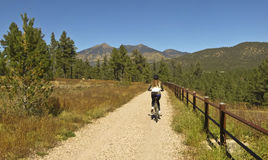 Езды велосипедиста женщины осенью стоковая фотография rf