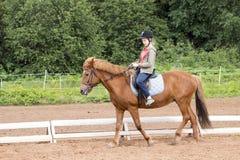 Езды девушки на лошади в поле Стоковые Изображения RF
