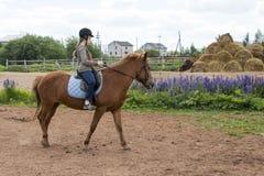 Езды девушки на лошади Стоковая Фотография