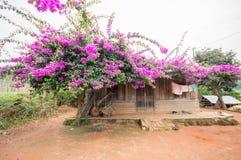 12, декабрь 2016 - дом людей Churu близко бегством Дуном Вьетнамом Dalat- Стоковое Изображение