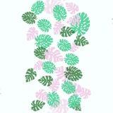 декоративная картина безшовная зеленый цвет выходит ладонь Тропическое monstera выходит иллюстрация Стоковое Изображение RF