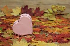 декоративное сердце Стоковая Фотография