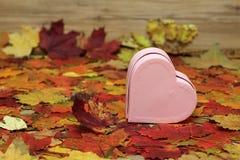 декоративное сердце Стоковые Изображения