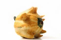 декоративные тыквы Стоковая Фотография RF