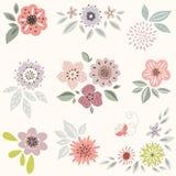 декоративные элементы флористические много установили Стоковая Фотография RF