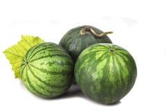 3 декоративных зрелых зеленых striped детеныша арбуза Стоковая Фотография RF