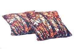 2 декоративных подушки Стоковые Фотографии RF