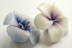 2 декоративных свечи в форме цветков Стоковое Изображение