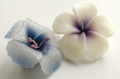 2 декоративных свечи в форме цветков Стоковые Фотографии RF