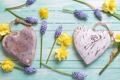 2 декоративных сердца и свежей желтой и голубой весна цветут Стоковое Фото