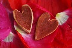 2 декоративных сердца на лепестках красного цвета мака Стоковое Изображение