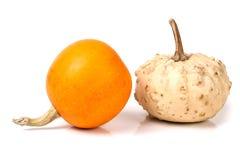 2 декоративных тыквы на белой предпосылке Стоковое Изображение