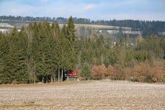 Елевая кабина поля леса стоковая фотография rf