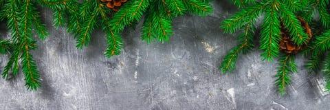 Елевый Новый Год разветвляет с конусами na górze серой конкретной предпосылки Рождество Нового Года Открытый космос для текста стоковая фотография rf